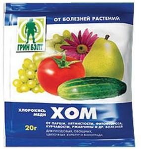 Пакет Хома