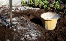 Как и зачем известковать почву осенью?