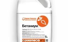 Бетаниум