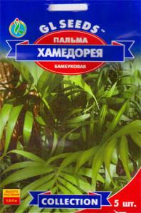 Семена хамедореи