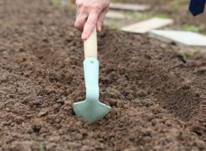 Проведение борозд для посева