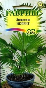Семена Ливистоны Нефрит