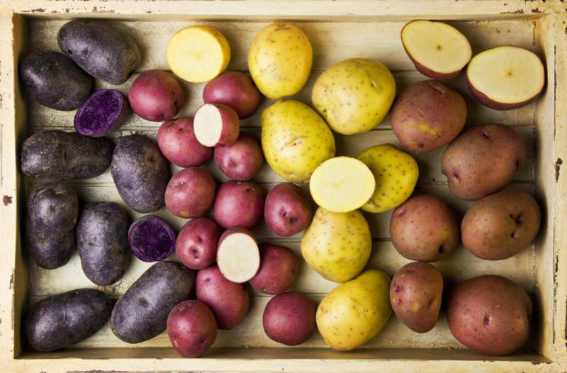 Разные сорта картофеля в ящике