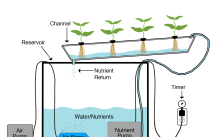 hydroponic systems nft