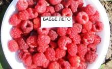 Малина Бабье лето в тарелке