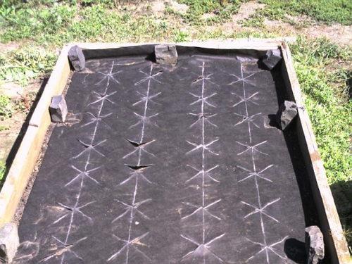 Как сажать клубнику под черный укрывной материал 174