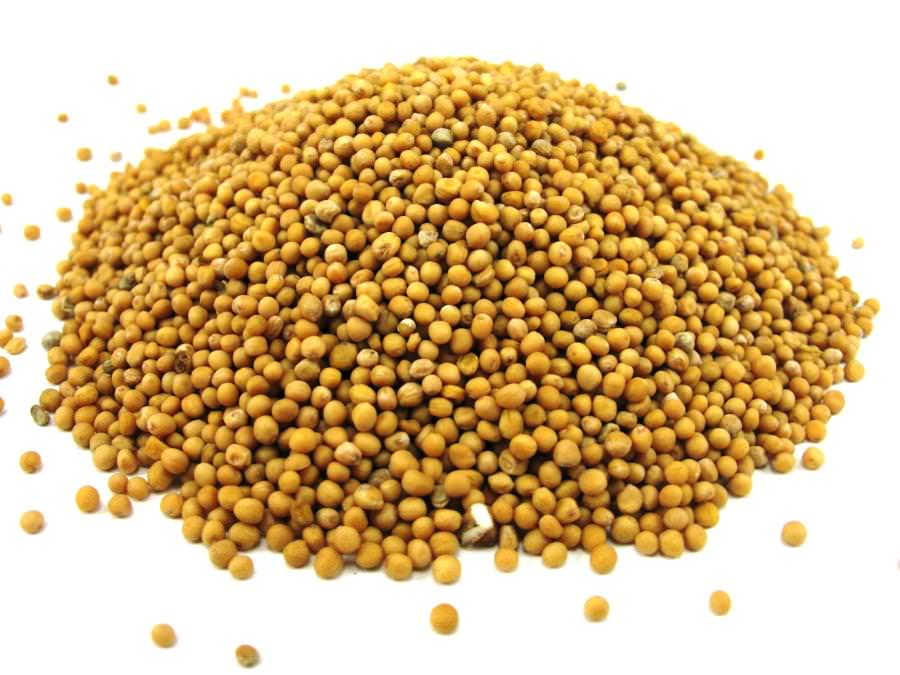 Горчица семена для еды