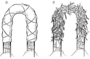 Укрытие плетистых роз на арке