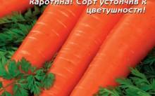 Витаминная морковь