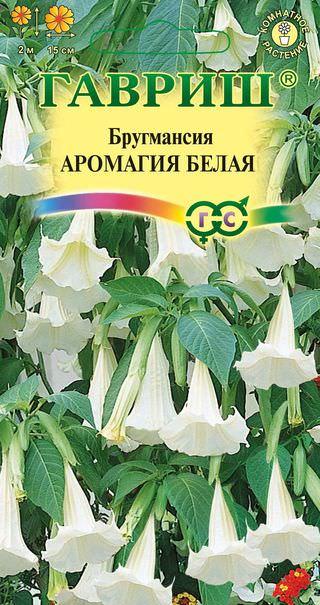 Пакет семян бругмансии