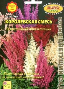 Пакет семян астильбы