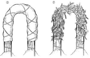 Укрытие плетистой розы на арке