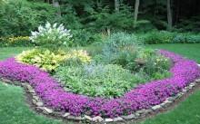 Клумбы, цветущие все лето