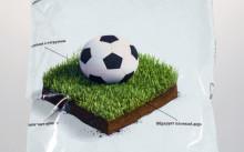 Спортивный газон (смесь)