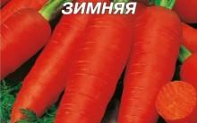 Московская зимняя