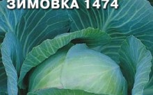 Капуста Зимовка 1474