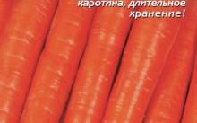 Император морковь