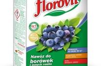 Florovit - удобрение для голубики